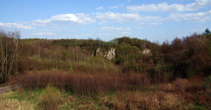 Plany Ochrony Parków Krajobrazowych: Dłubniańskiego i Rudniańskiego