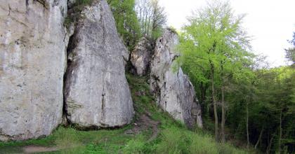 Grupa Łabajowej i Łabajowa Baszta w tle