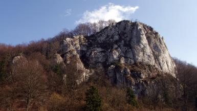Sokolica w Dolinie Będkowskiej